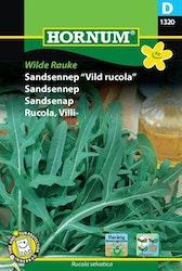 Ruccola - Wilde Rauke
