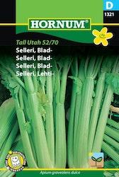 Bladselleri - Tall Utah 52/70