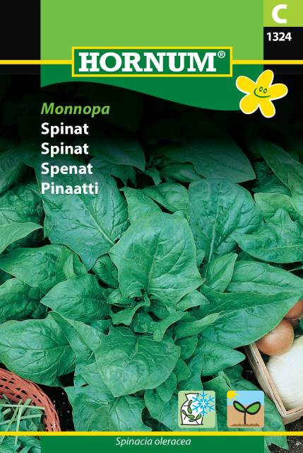 Spenat - Monnopa