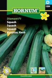 Squash - Diamant F1