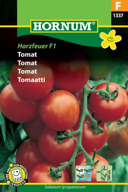 Tomat - Harzfeuer F1