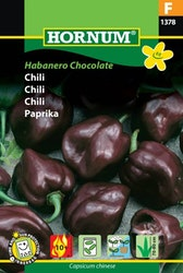 Chili - Habanero Chocolate