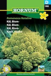 Romanesco kål - Romanesco Natalino