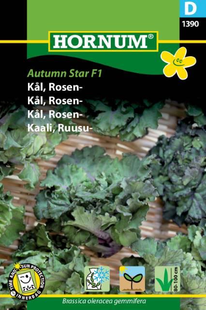 Brysselkål - Autumn Star F1