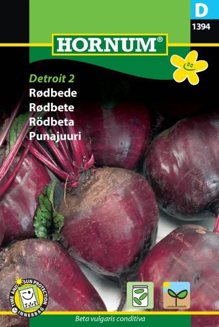 Rödbeta - Detroit 2