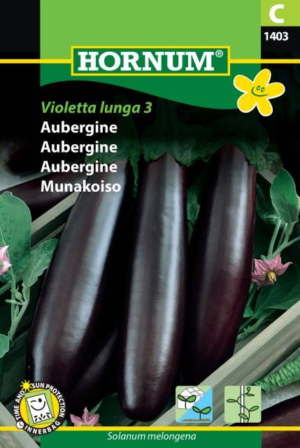 Aubergine - Violetta lunga 3