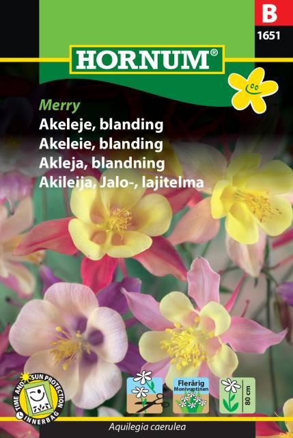 Akleja mix - Merry