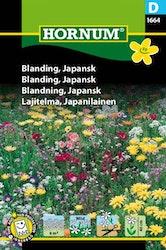Japansk blom mix - Hornum frø