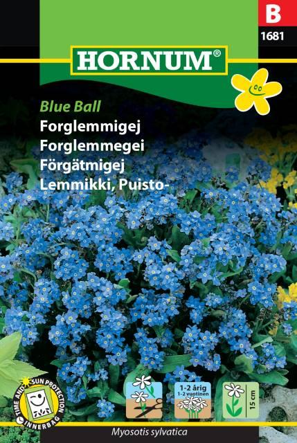 Forgätmigej - Blue Ball