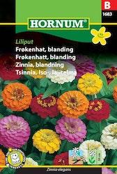 Zinnia mix - Liliput