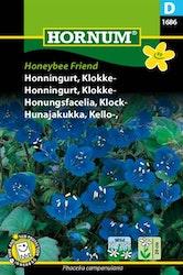 Klock Honungsfacelia - Honeybee Friend