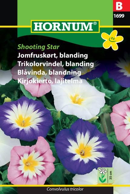 Blåvinda mix - Shooting Star