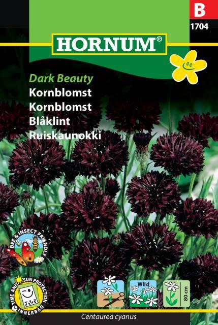 Blåklint - Dark Beauty