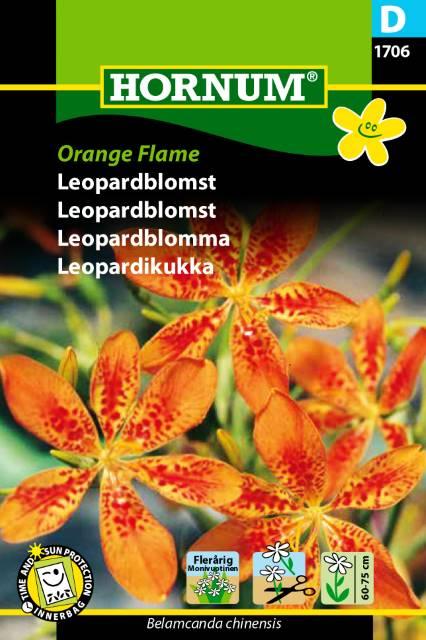 Leopardblomma - Orange Flame