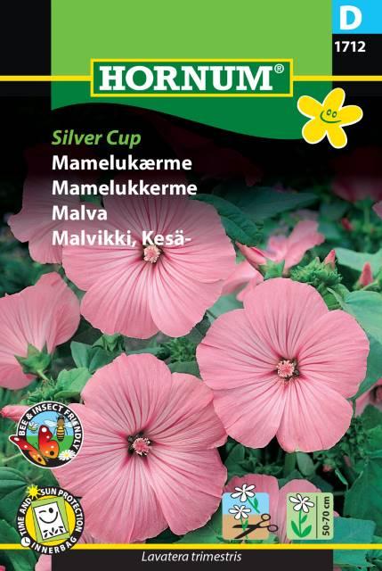 Malva - Silver Cup