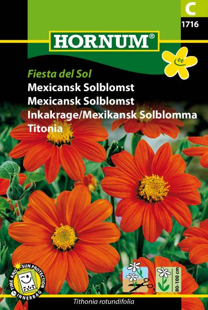 Mexikansk solblomma - Fiesta del Sol