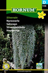 Silvernjurvinda - Silverrain