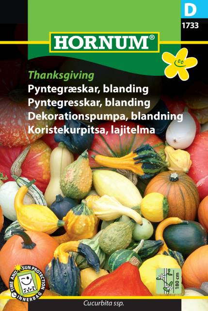 Dekorationspumpa mix - Thanksgiving