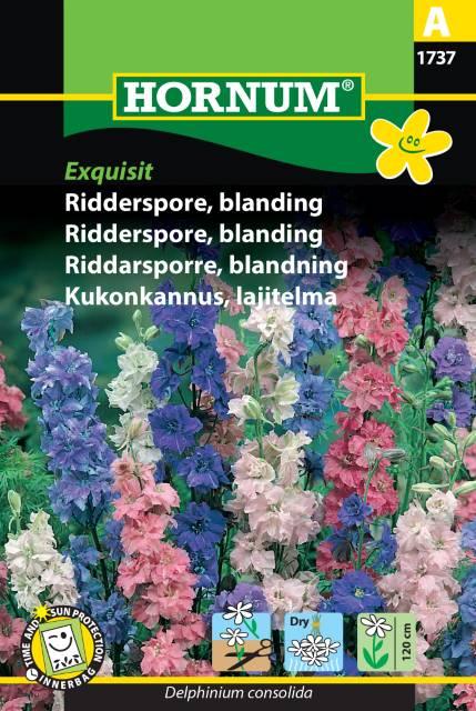 Riddarsporre mix - Exquisit