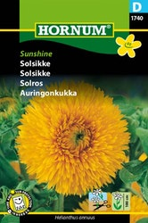 Solros - Sunshine