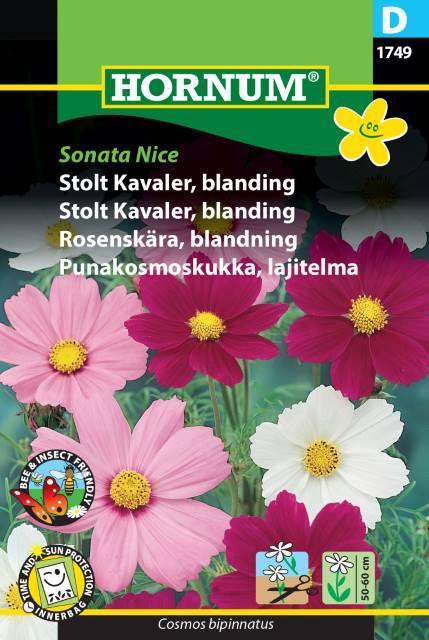 Rosenskära mix - Sonata Nice