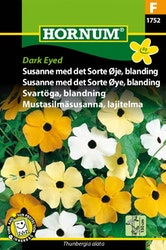 Svartöga mix - Dark Eyed