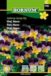 Viol - Johnny Jump Up