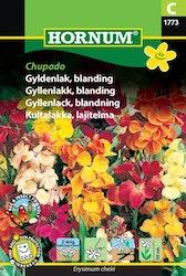 Gyllenlack mix - Chupado