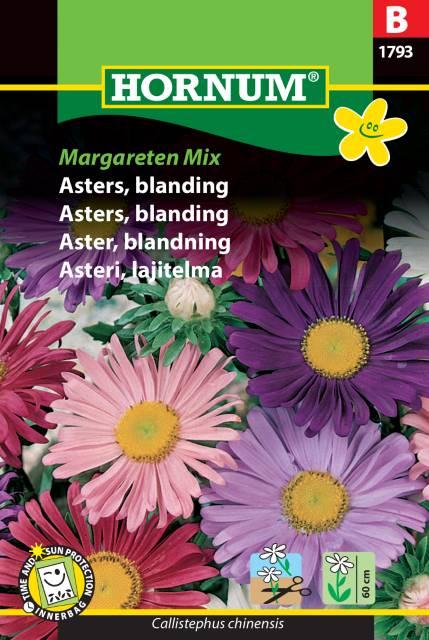 Aster mix - Margareten mix