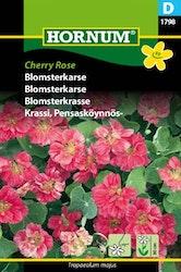 Blomsterkrasse - Cherry Rose