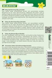 Trädgårdsringblomma - Orange Porcupine