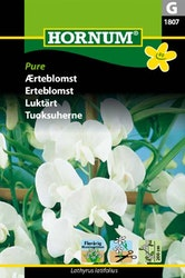 Luktärt - Pure