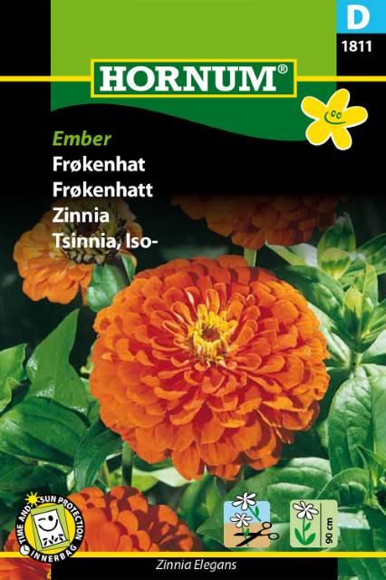Zinnia - Ember