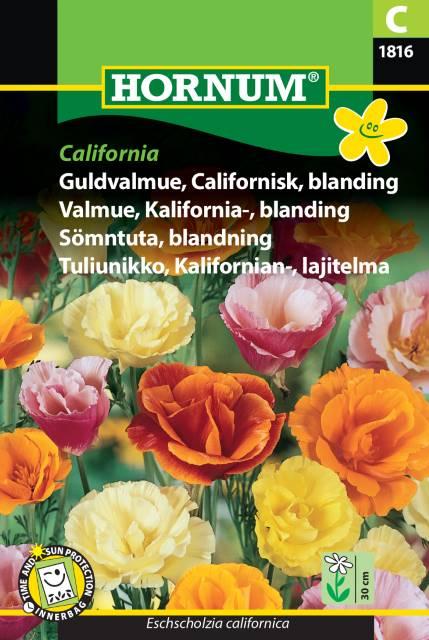 Sömntuta mix - California