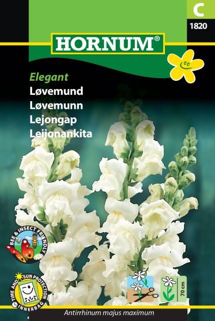 Lejongap - Elegant