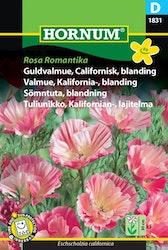Sömntuta mix - Rosa Romantika