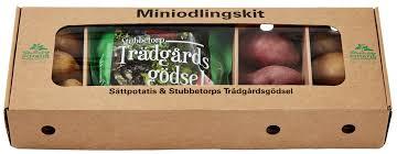 Mini odlingskit - Stubbetorp