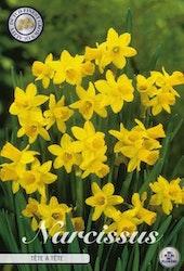 "Narcissus ""Tete a Tete"", 10 st./förpack."