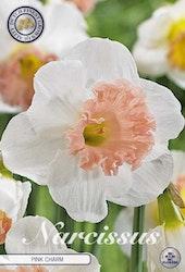 "Narcissus Trumpet ""Pink Charm"", 5 st./förpack."