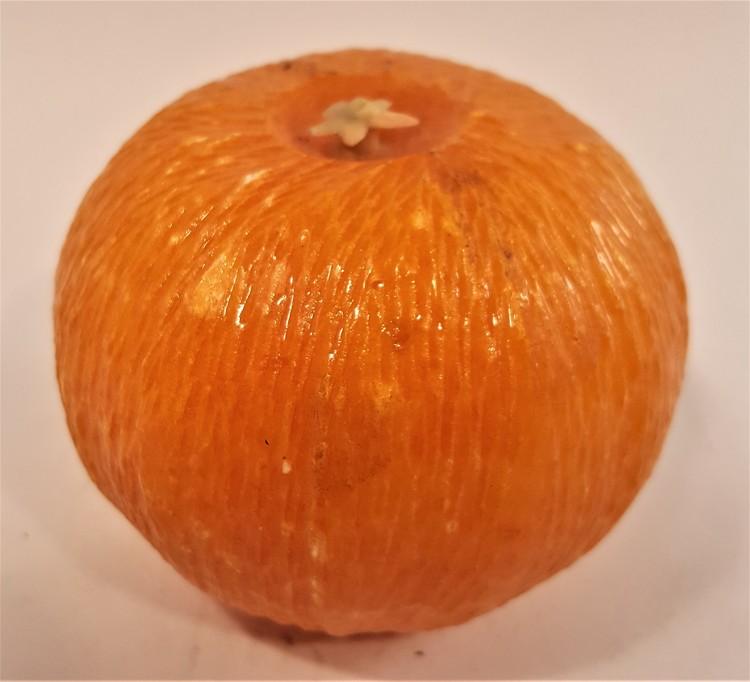 Naturtrogen apelsin i glas