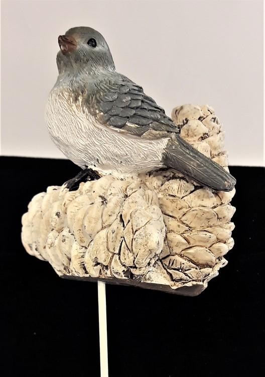Söt fågel med kottar för dekoration