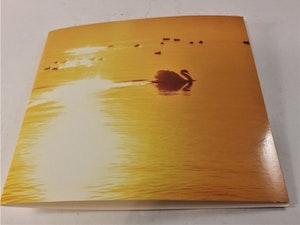 Fyrkantigt grattiskort med svanmotiv, utan text