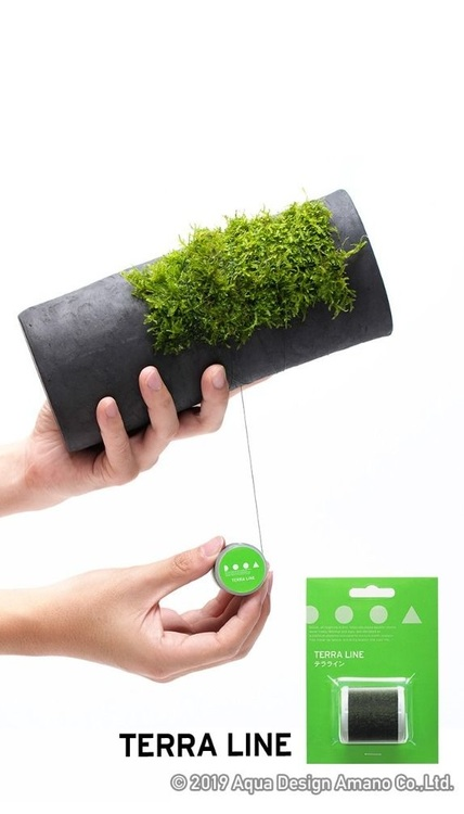 Terra Line - Special tråd för att binda växter