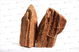 Förstenat trä, Rödbrun
