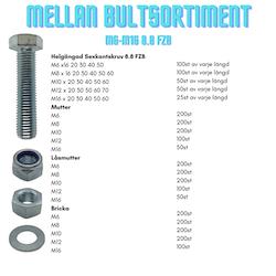Mellan Bultsortiment M6-M16 8.8 FZB