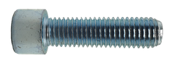 M10x25 8.8 FZB INSEX