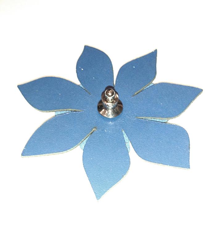 Clematis blomreflex, blå