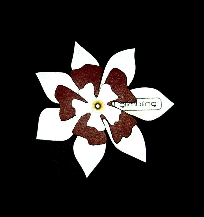 Clematis blomreflex, brun