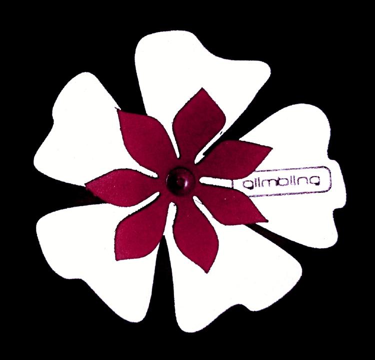 Poppy blomreflex, cerise