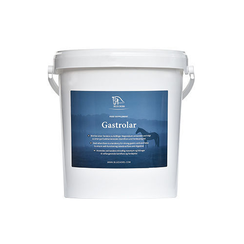 Blue Hors Gastrolar